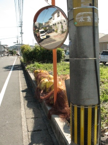 the ubiquitous road mirror