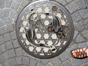 Manhole cover with cormorant design