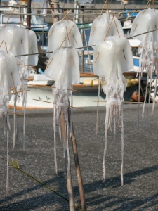 Squid drying in tsurimisaki