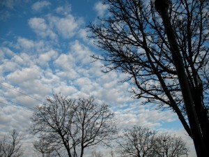 Beaverton sky