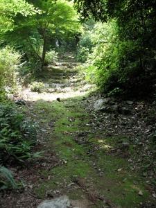 The path behind Touzenji