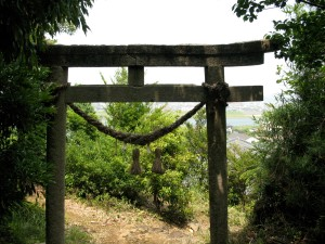 The stone torii gate that lured me into the forest