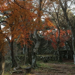 Autumn and castle ruins at the top of Shiroyama
